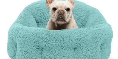 Best Heated Dog Beds Amazon