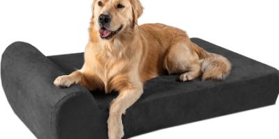 Best Heated Orthopedic Dog Beds